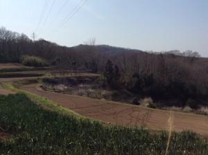 写真 2014-03-12 13 13 35